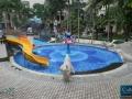Pool ABC7